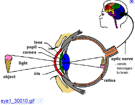 picture - eye images